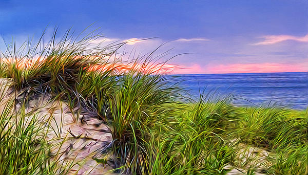 Tammy Wetzel - Sunset on Wellfleet Dunes