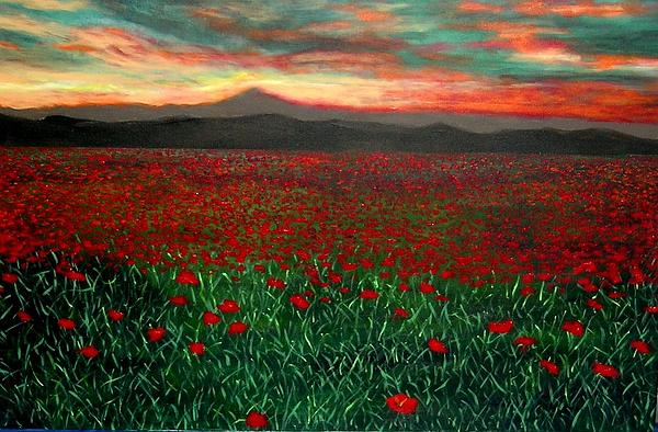 Marie-Line Vasseur - Sunset over poppies field