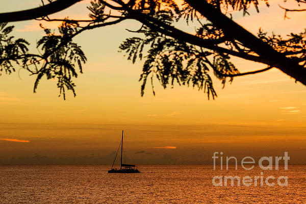 Sunset Sail Print by Rene Triay Photography