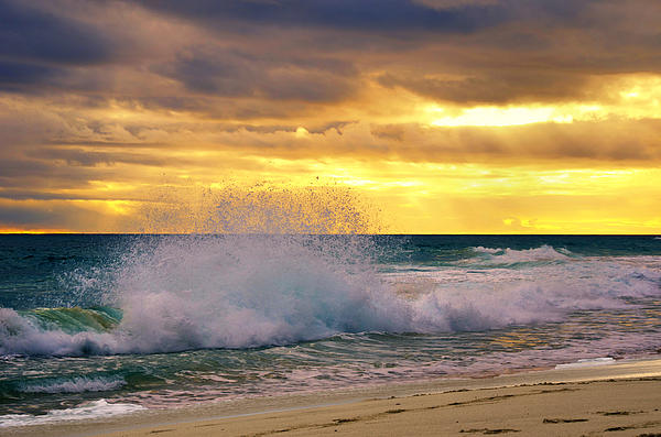 Imagevixen Photography - Sunset Wave