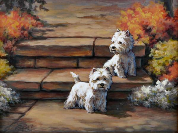 Sunshine And Shadow--westies Print by Alice Taylor