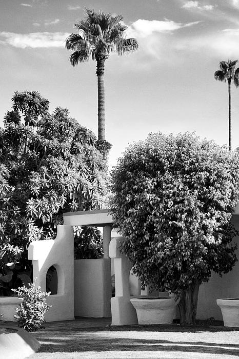 Suntan Lane Palm Springs Print by William Dey