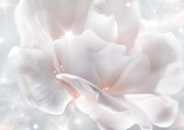 Surprise Rose Print by Svetlana Sewell