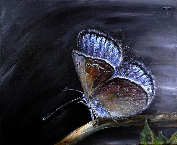 Tanya Byrd - Surreal Common Blue