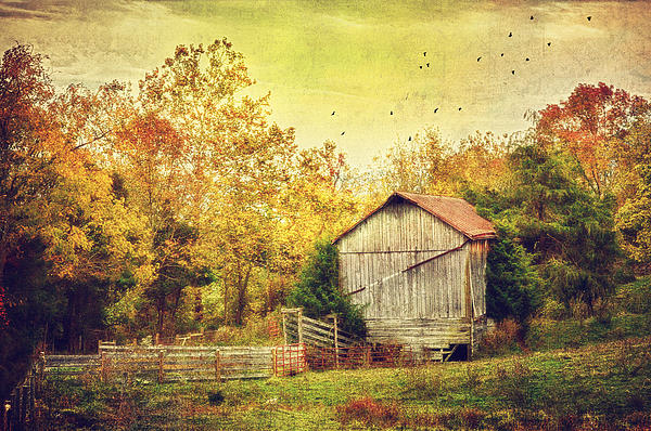 Surrounded By Fall Print by Kathy Jennings
