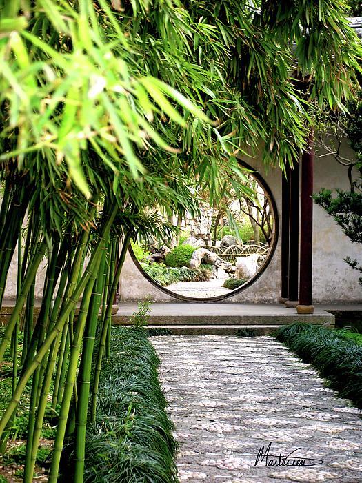 Suzhou Bamboo Gardens By Marti Green