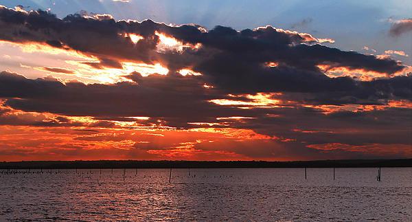Swan Bay Sunset Print by Paul Svensen