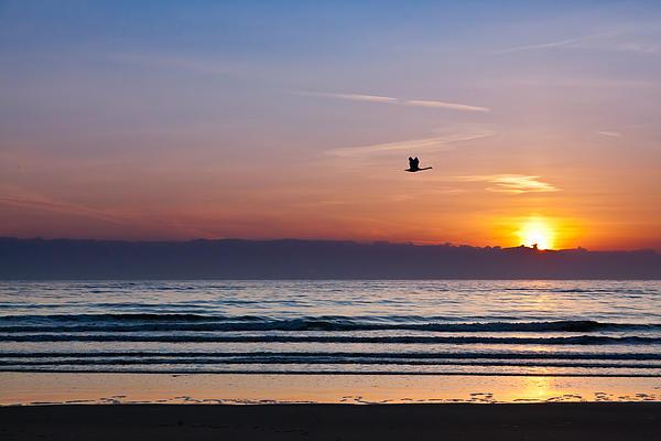 Gary Finnigan - Swan song