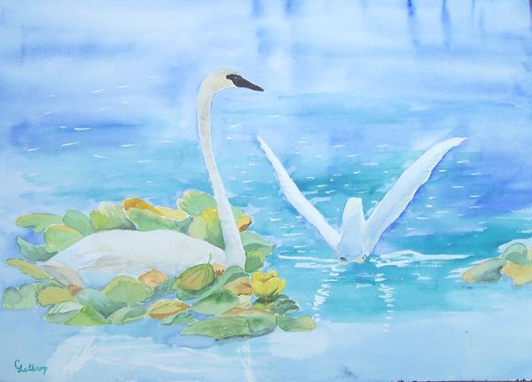 Swans Print by Christine Lathrop