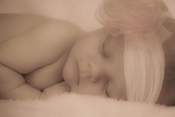 Sweet Dreams Print by Trish Tritz