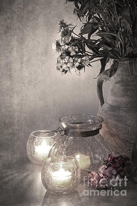 Sweet Williams Sepia Print by Jane Rix