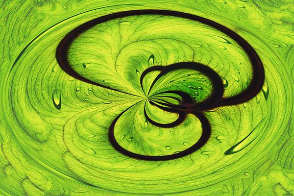 Swirls Print by Skip Nall