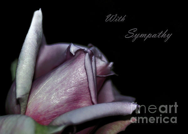 Sympathy Card With A Rose Print by Kaye Menner