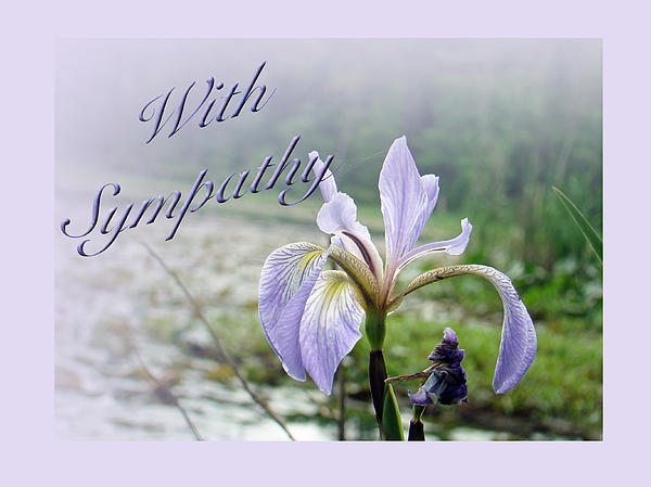 Mother Nature - Sympathy Greeting Card - Wild Blue Flag Iris