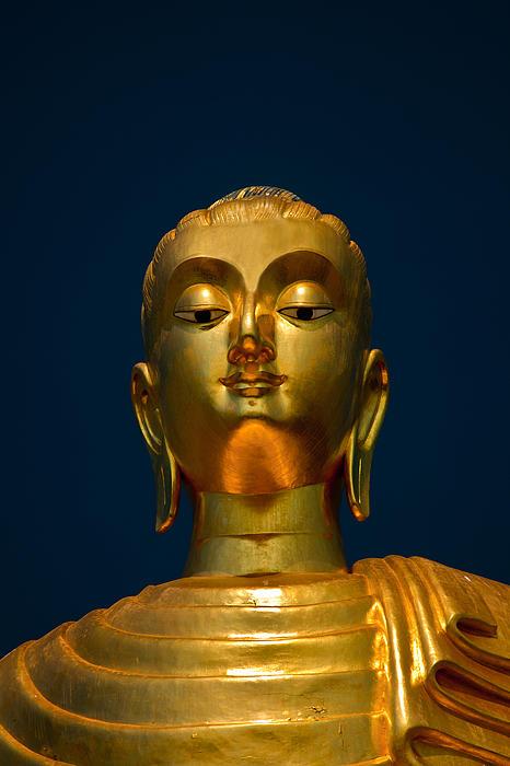 Tangsai Buddha Print by Adrian Evans