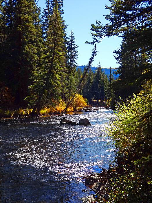 Terril Heilman - Taylor River