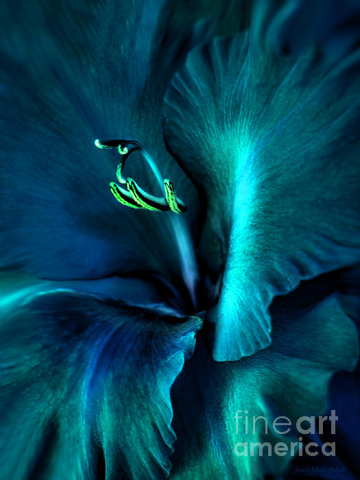Jennie Marie Schell - Teal Gladiola Flower