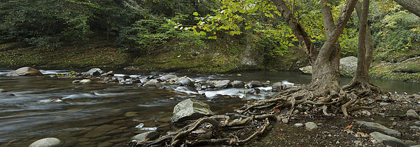 Tennessee Stream Panorama 6045 6 Print by Michael Peychich