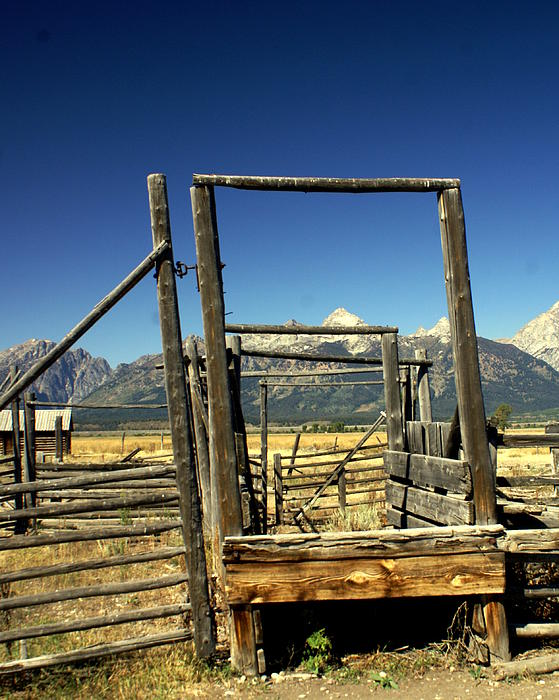 Teton Ranch Print by Marty Koch