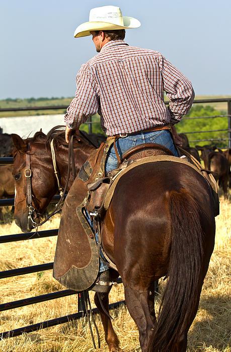 Texan Cowboy Print by Elizabeth Hart