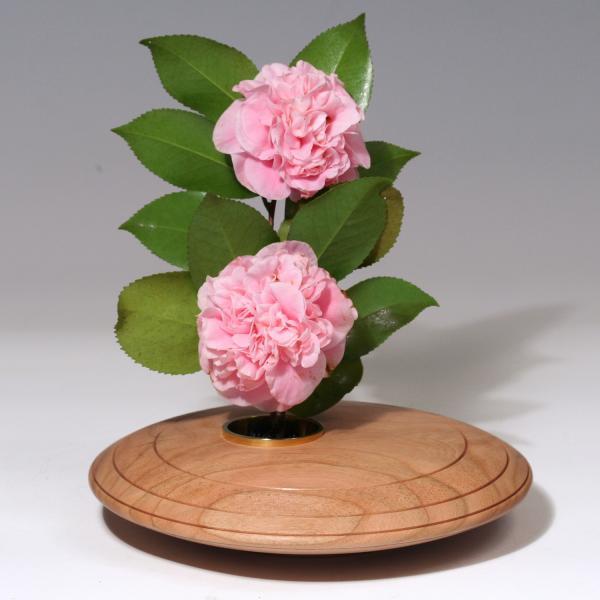 Ikebana - Page 6 Textured-cherry-ikebana-patricia-lloyd