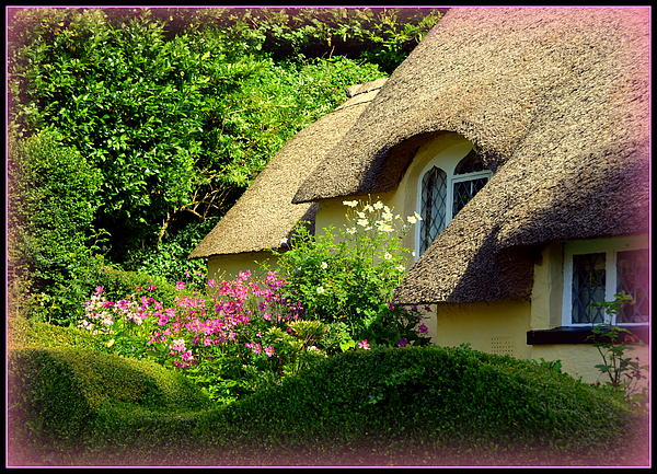 Thatched Cottage With Pink Flowers Print by Carla Parris