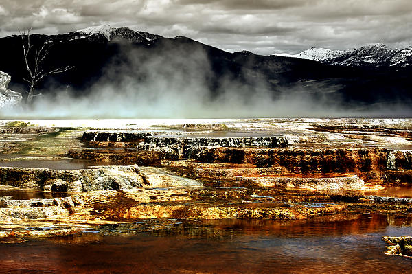 The Beauty Of Yellowstone Print by Ellen Heaverlo