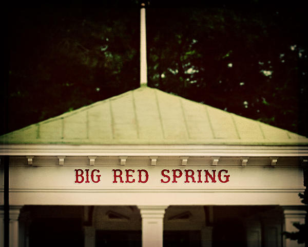 The Big Red Spring Print by Lisa Russo