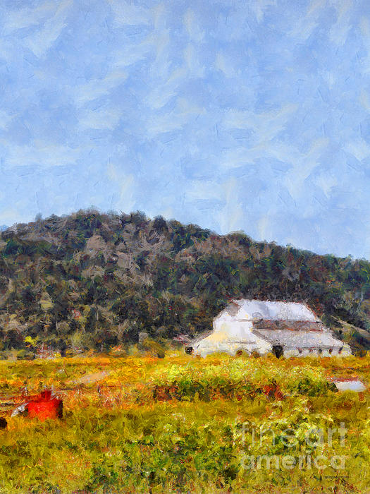 The Big White Barn At Point Reyes California . 7d15933 Print by Wingsdomain Art and Photography
