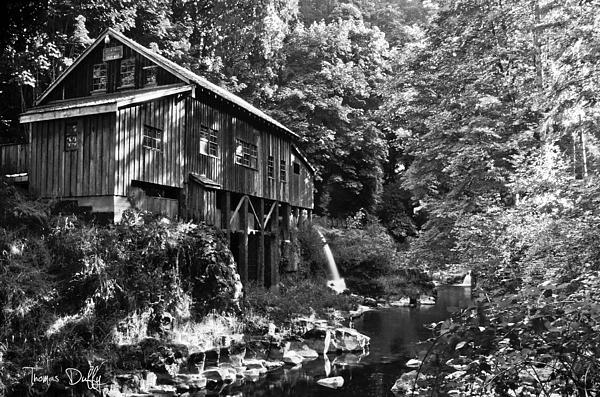 The Cedar Creek Grist Mill By Thomas Duffy