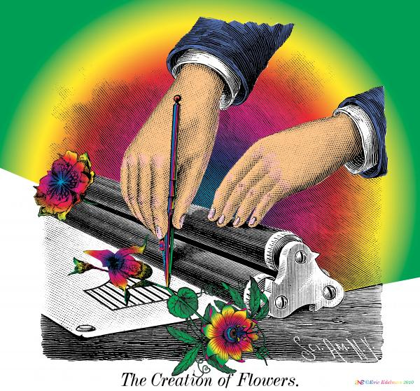 The Creation Of Flowers Digital Art  - The Creation Of Flowers Fine Art Print