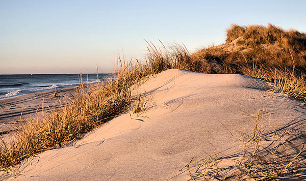 The Dunes Of Jones Beach Print by JC Findley