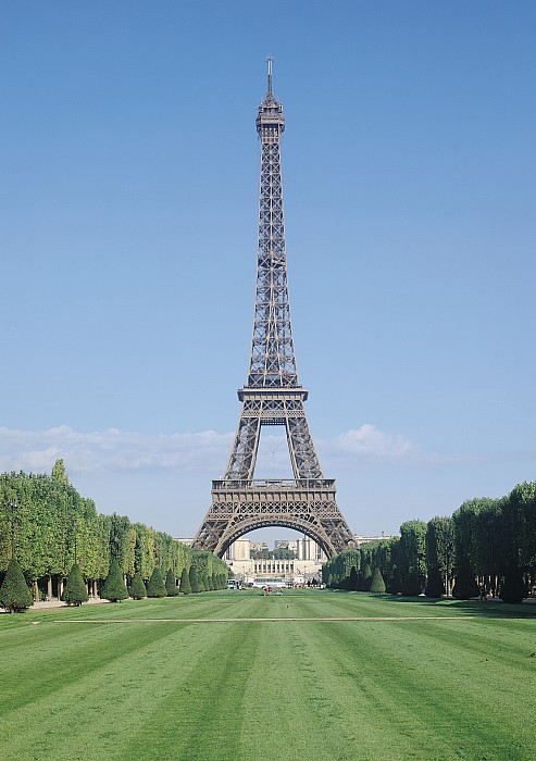The Eiffel Tower Print by French School