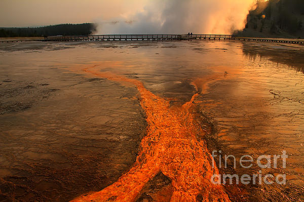Teresa Zieba - The Enchantment of Grand Prismatic Spring