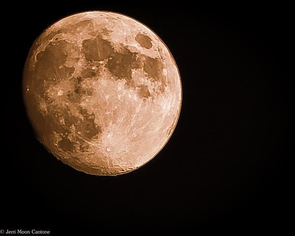 Jerri Moon Cantone - The Fabulous Moon