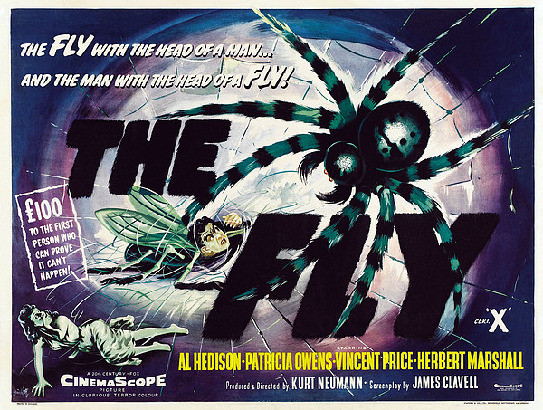 The Fly, David Hedison Aka Al Hedison Print by Everett