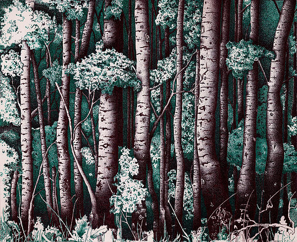 The Grove At Sand Creek Print by Teddy Campagna