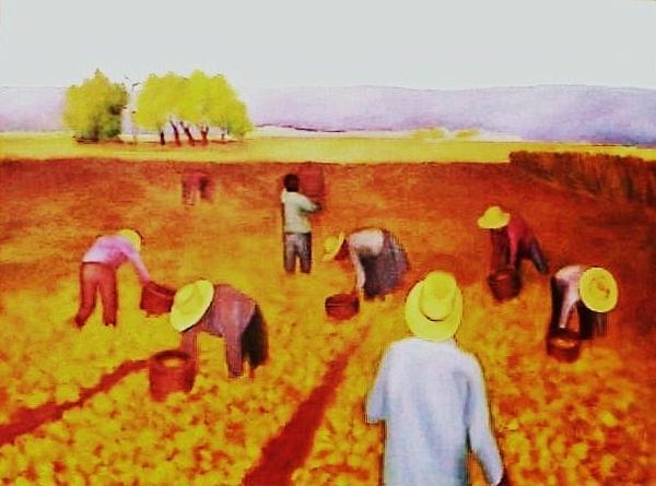 Clotilde Espinosa - The Harvest