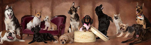 The Last Pupper Print by  Angel Pachkowski