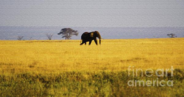 The Lone Elephant Print by Pravine Chester