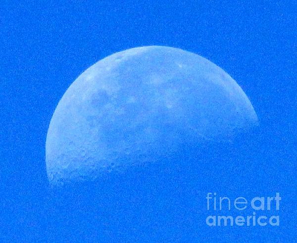 Krista May - The Morning Moon