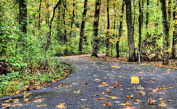 The Mount Vernon Trail. Print by JC Findley