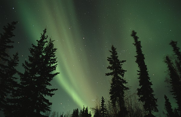The Northern Lights Print by Maria Stenzel