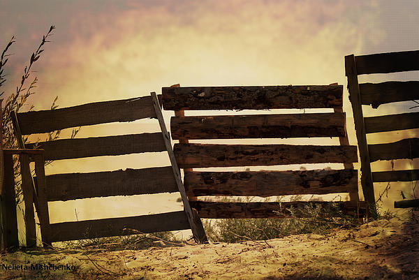 Nelieta Mishchenko - The other side of the fence