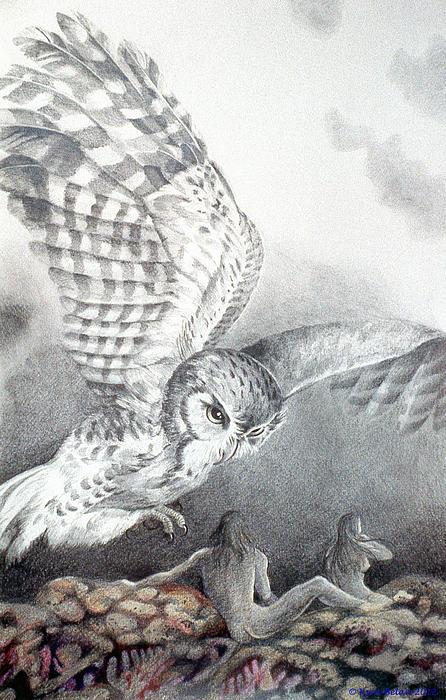 The Owl Of Athena Print by Kyra Belan