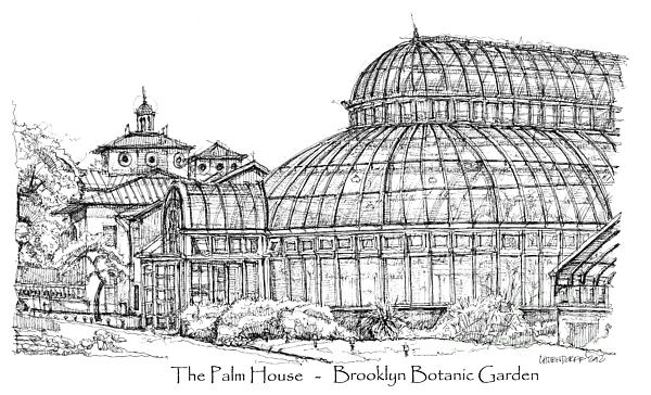 The Palm House In Brooklyn Botanic Garden Print by Lee-Ann Adendorff