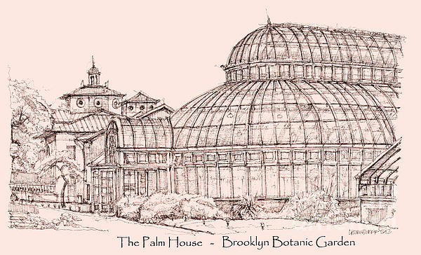 The Palm House In Pink Print by Lee-Ann Adendorff