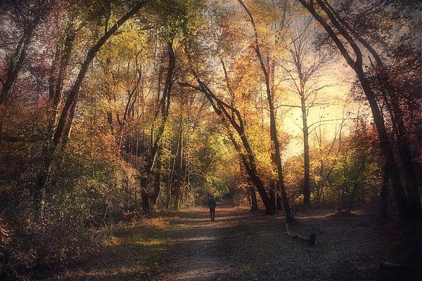 John Rivera - The path that guides you