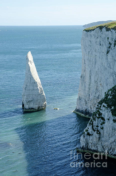The Pinnacle Stack Of White Chalk On The Isle Of Purbeck Dorset England Uk Print by Andy Smy