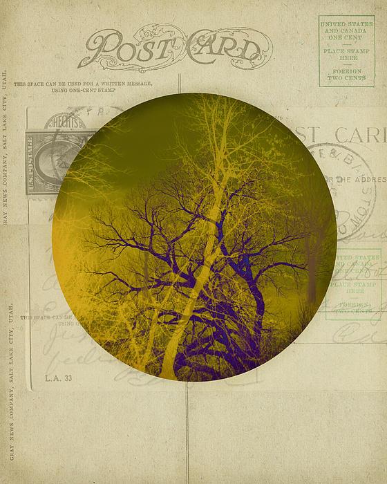 The Postcard Print by Ann Powell